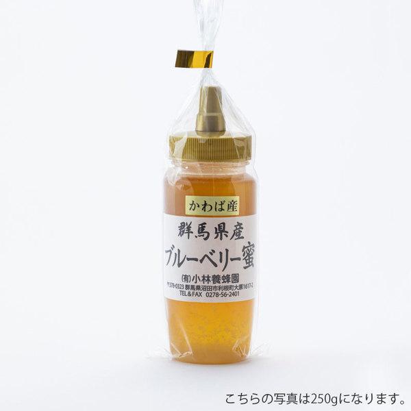 ブルーベリー蜜の商品イメージ-221